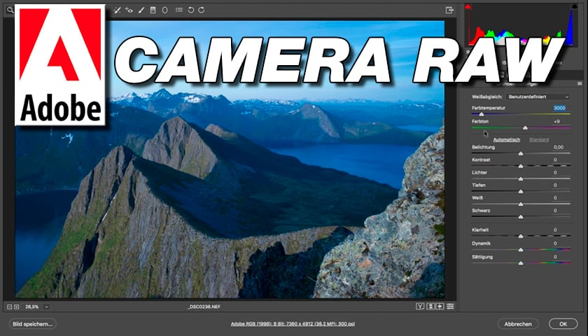Comment maîtriser le Camera RAW 4.2? | PHOTO-TREND